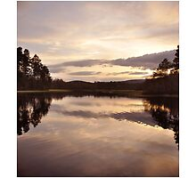A spring evening at Loch Kinord by Suzanne Edge