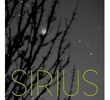 Sirius Photographic Print