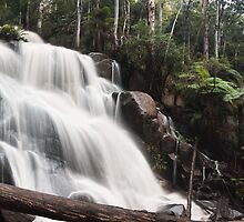 Toorongo Falls - Panograph by Sean Farrow
