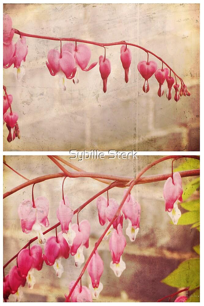 Spring - Bleeding Hearts by Sybille Sterk