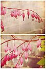 Spring - Bleeding Hearts by Sybille Sterk