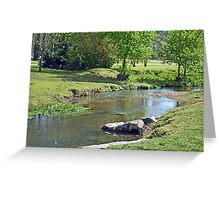 Little Cahaba River Greeting Card