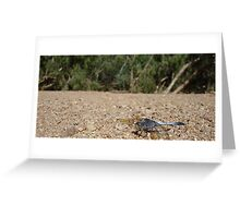 Sapphire Dragonfly Greeting Card