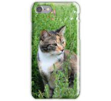 Cat in The Garden iPhone Case/Skin