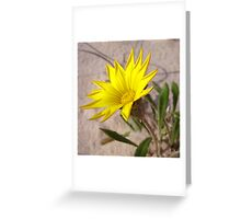 Beach Bloom Greeting Card
