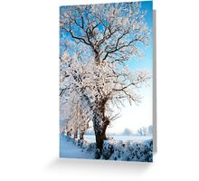 frozen tree Greeting Card