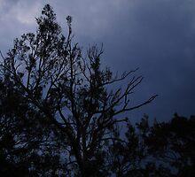 Stormy Sky by Caine Mazoudier