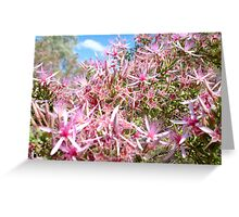 Turkey Bush Greeting Card
