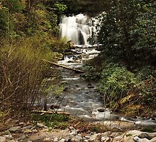 meigs waterfall by kathy s gillentine