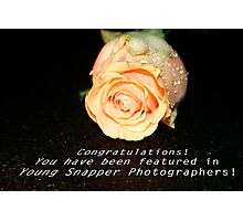 Learning to Bloom:  Feature Banner Photographic Print