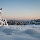 Winter Landscape in Finland by Ville Vuorinen