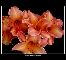 Lilies: Pink and Orange by Rose Santuci-Sofranko