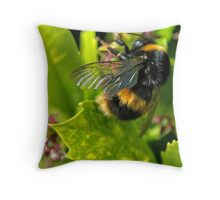 bee close up Throw Pillow