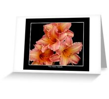 4 Lilies: Pink and Orange #2 Greeting Card