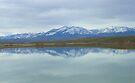 Unity Lake Reflection by BettyEDuncan