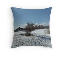 Fort Williams Park, maine  lonley tree Throw Pillow