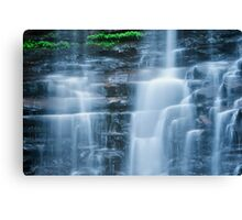 Silky Smooth Canvas Print