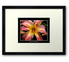 Lily: Pink and Yellow Framed Print