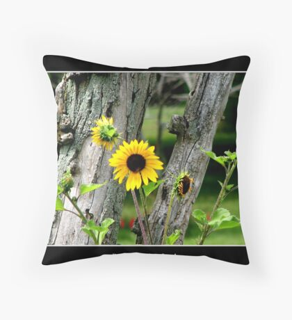 Sunflowers #2 Throw Pillow