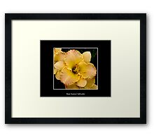 Lilies: Yellow #1 Framed Print