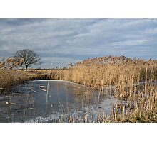 Frozen Fen - Wicken Fen Cambridgeshire Photographic Print