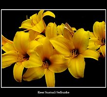 Lilies: Yellow #3 by Rose Santuci-Sofranko