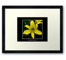 Lily: Yellow Framed Print