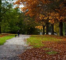 Virginia Waters in Autumn by Melanie Simmonds