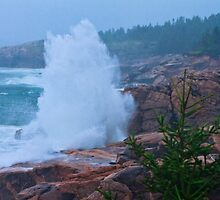 Big Splash Cape Breton by bengraham