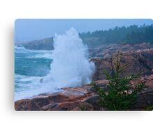 Big Splash Cape Breton Canvas Print