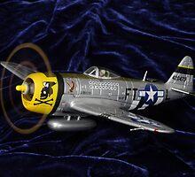 P47 on velvety soft landing. ;-) by rogerlloyd