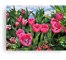 Fancied Pink Canvas Print