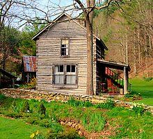 Blue Ridge Cabin by Jane Best