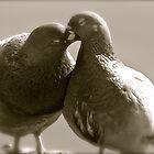 6 ★★★★★★ . Miłość Ci  jednak nie wszystko wybaczy ,  'Love may forgive all . Tribute to Romeo and Juliet and True Love . Amen !!!  by Brown Sugar. Favorites: 12 Views:720 .  Thank you friends ! by © Andrzej Goszcz,M.D. Ph.D