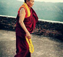 Venerable Khenchen Palden Sherab Rinpoche by dcphotos