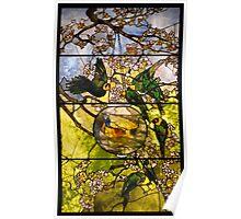 parakeets and goldfish bowl . Poster