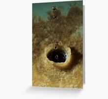 Drip and Splash 10 Greeting Card