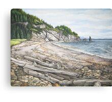 Cape Breton Seascape Canvas Print