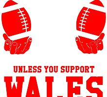 You Can't Play With These Unless You Support Wales T Shirt and Hoodies by zandosfactry