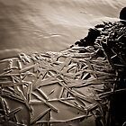 Abstract Ice on the Rappahannock River - 2 by Stephen Graham