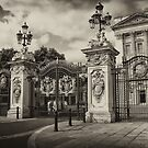 The Palace by capizzi