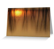 More Marsh Reflections Greeting Card
