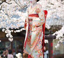 Geiko & Sakura 3 by Sam Ryan