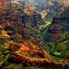 Hawaiian Grand Canyon by Stephen  Saysell