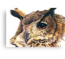Portrait of an eagle owl Canvas Print
