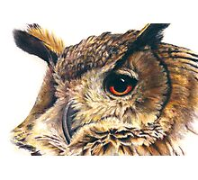 Portrait of an eagle owl Photographic Print