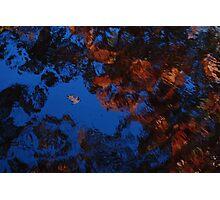 Autumn Blues Dream Photographic Print