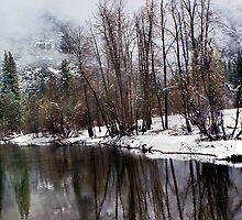 Winter in Yosemite by Floyd Hopper