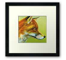Portrait of a fox Framed Print