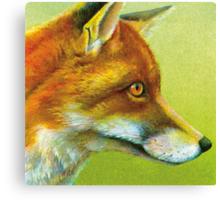 Portrait of a fox Canvas Print